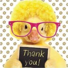 duck-thank-you